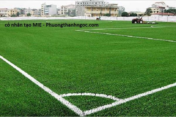 cỏ nhân tạo MIE được phương thành ngọc đưa vào thi công và nhận được phản hồi tốt