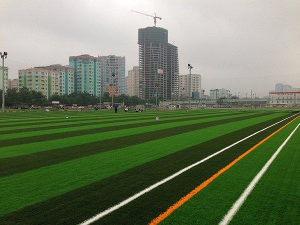 Dự án sân cỏ nhân tạo FPT - Hoàng Minh Giám - Hà Nội