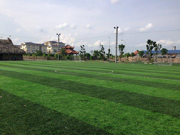 Dự án sân cỏ nhân tạo Trường công nghệ kinh doanh - Đền Đô - Bắc Ninh