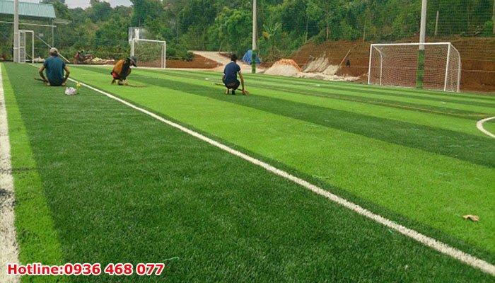 Bảo dưỡng cỏ nhân tạo tại Thanh Hóa