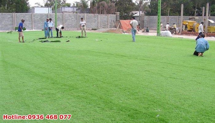 Bảo dưỡng cỏ nhân tạo tại Tuyên Quang