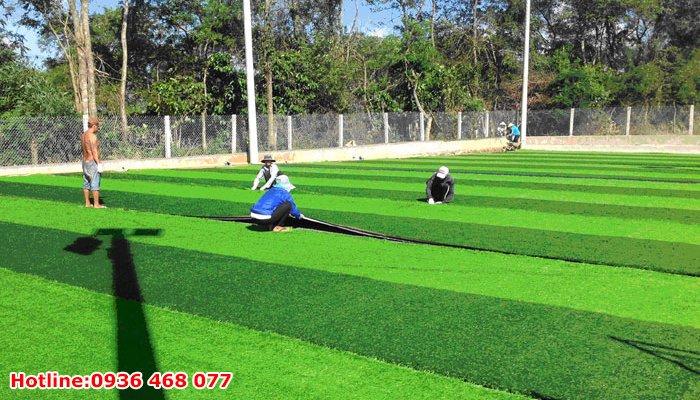 Bảo dưỡng cỏ nhân tạo tại Vĩnh Phúc