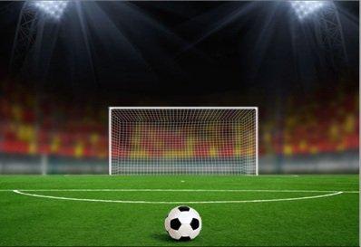 Kinh doanh sân cỏ nhân tạo đá bóng
