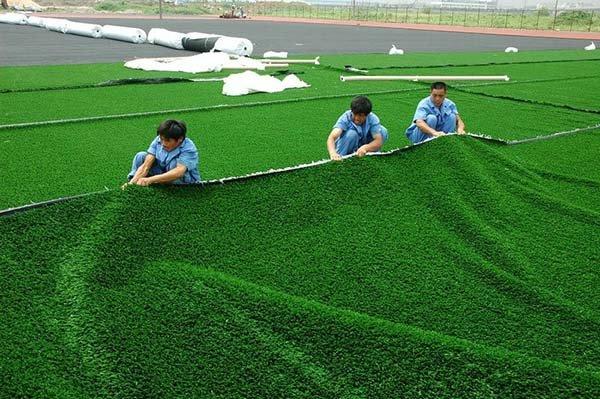 Các hạng mục thi công sân cỏ nhân tạo