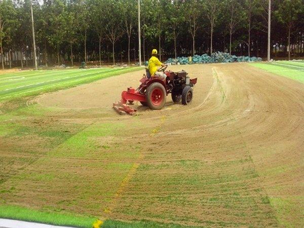 quy trình cán nền trước khi trải cỏ
