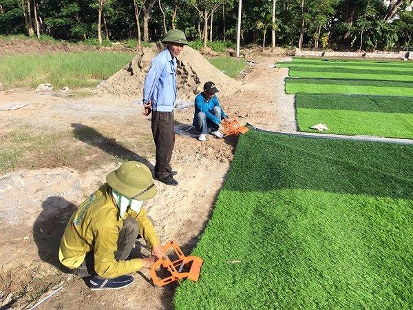 quy trình trải cỏ