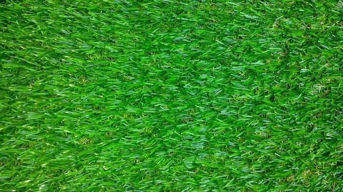 bán cỏ nhân tạo tại thành phố Hồ Chí Minh