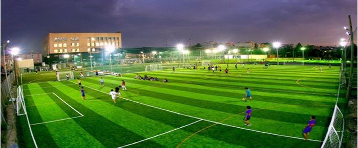 Ứng dụng cỏ nhân tạo trong sân thể thao