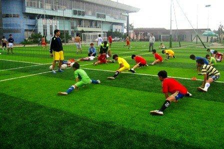 Cỏ nhân tạo ứng dụng làm sân bóng đá