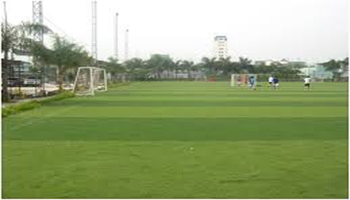 Sân bóng cỏ nhân tạo Hưng Vượng