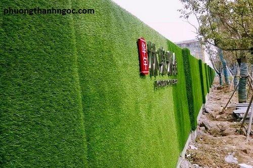 cỏ nhân tạo dán tường 04