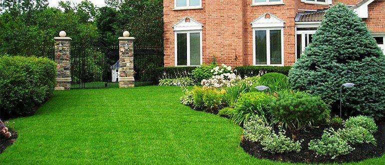 Cỏ nhân tạo sân vườn phù hợp sử dụng với các loại vườn