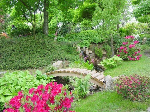 cỏ nhân tạo sân vườn trang trí khu vườn nhiều cây cổ thụ