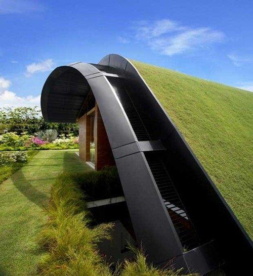Cỏ nhân tạo giúp kiến trúc ngôi nhà trở lên độc đáo