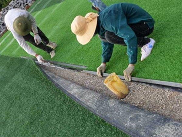 tự chăm sóc cỏ nhân tạo