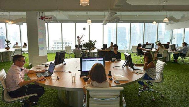 cỏ nhân tạo trang trí văn phòng